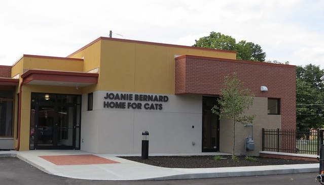 Joanie Bernard Home for Cats